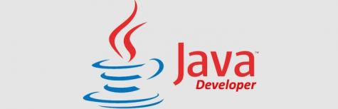 TRROW IT COMPANY are hiring JAVA Developers for the 2017 Passout candidates Venue on On 9, 11 &12 June 2018
