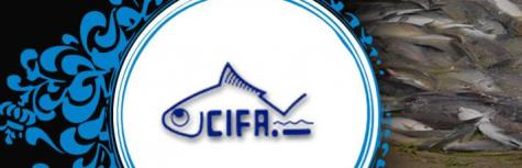 CIFA are hiring for Young Professional II , job location Bhubaneswar   Odisha on 25 June 2018